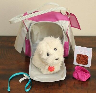American Girl Doll PET PUPPY COCONUT + CARRIER FOOD COLLAR LEASH BOWL Dog