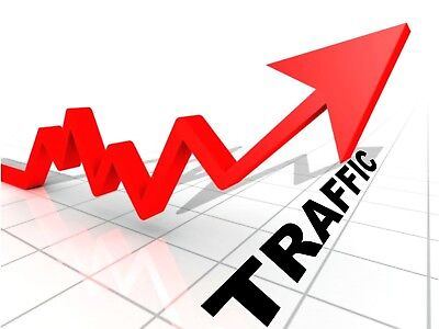 3000 website visitors hit traffic NO BOTS