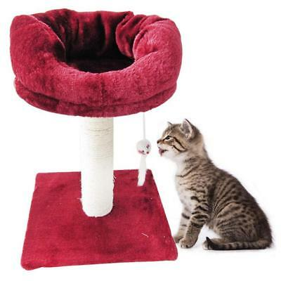 Pet Cats New Scratch Wood Tree Jump Toy Climb Frame Pet Double Layer Furniture