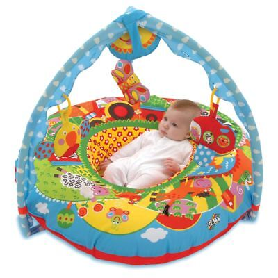 Galt Toys Baby Playnest and Gym Play Mat Play Chair Ring Gift Farm 381004060