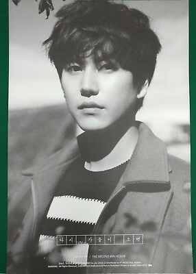 Kyuhyun (Super Junior) -Fall, Once Again Unfolded Official Poster Hard Tube Case