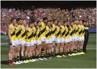 Richmond Tigers Lineup And Pre Game Seated Shots A4 Posters