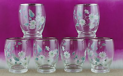 Set of 6 retro water/cordial glasses, floral pattern with silver edging.