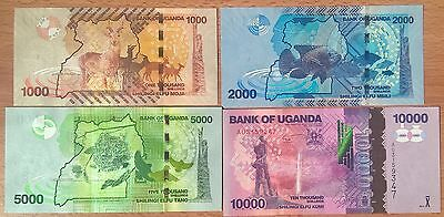 Uganda Set 4 PCS, 1000+2000+5000+10000 Shillings, 2013, UNC