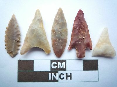 Neolithic Arrowheads x5, High Quality Selection of Styles - 4000BC - (X022)