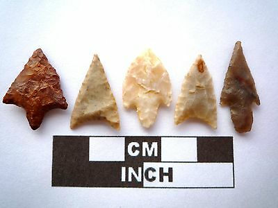 5 x High Quality Neolithic Arrowheads - 4000BC - (N050)