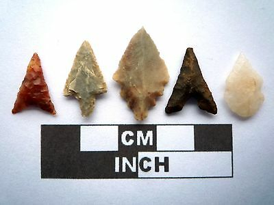 5 x High Quality Neolithic Arrowheads - 4000BC - (K006)