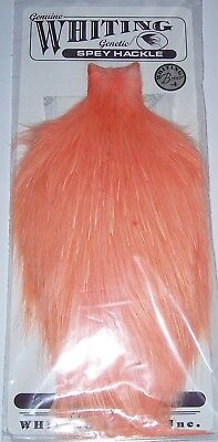 Whiting Spey Hackle Rooster - Farbe salmon - Rarität - NEU
