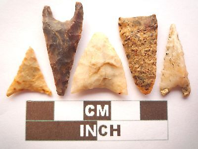 Neolithic Arrowheads, 5 x Triangle Style Artifacts - 4000BC - (Z055)