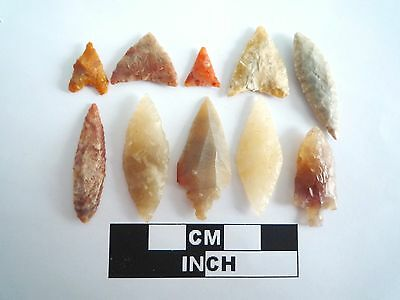 Neolithic Arrowheads x 10, High Quality Selection of Styles - 4000BC - (0397)
