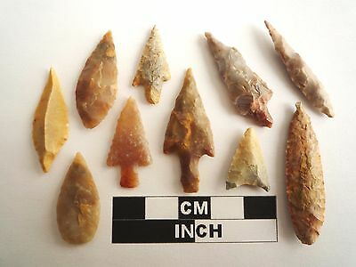 Neolithic Arrowheads x 10, High Quality Selection of Styles - 4000BC - (1085)
