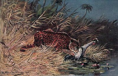 Vintage Postcard Painting of Leopard with Waterfowl, Artist Signed  Unused