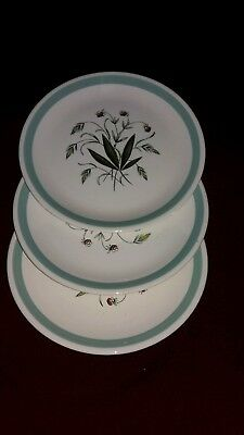 Alfred Meakin Hedgerow Green Design 9 Inch (3 Side/Salad Plates)