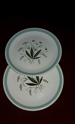 Alfred Meakin Hedgerow Green Design 9.8 Inch (2 Dinner Plates)