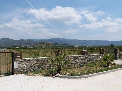 Pomegranate Orchard Great Potential To Build Your House In Selcuk Ephesus Turkey
