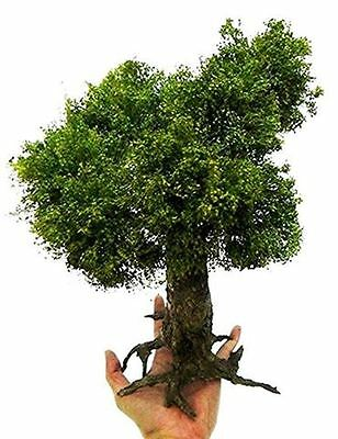 1/35 scale realistic handmade model tree grasses leaves. TNT-007