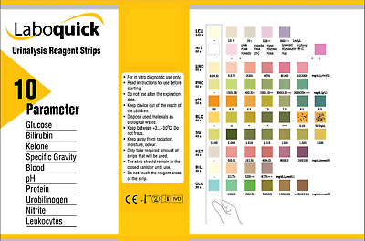 Urine Test Strips - Urinalysis 10 Parameter Professional-15pcs Multi Stick Tests