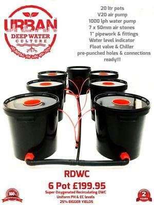 Urban RDWC Hydroponic 6 Pot System 20L Rapid Root Growth Not Alien IWS RUSH DWC