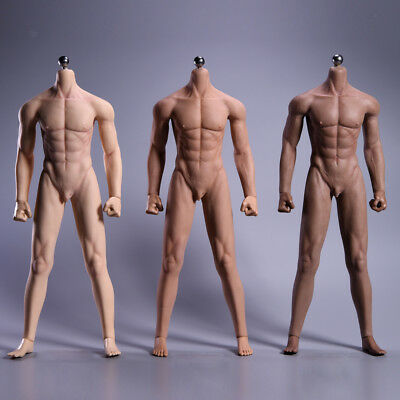 1:6 Scale Ultra-Soft Muscular Male Seamless Stainless Steel Body wi/ Accessories