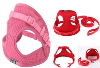 Tiny Dog Harness Lead Set Teacup Mini Puppy Chihuahua Rabbit Cat Toy Red/Pink.