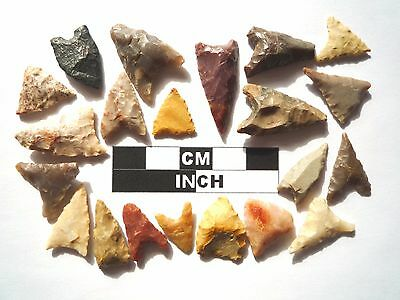 20 x Triangle Style Neolithic Arrowheads - 4000BC - (990)
