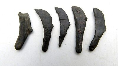Lot Of 5 Bronze Proto Money - Dolphins - Olbia - Ancient Currency Artifact B460