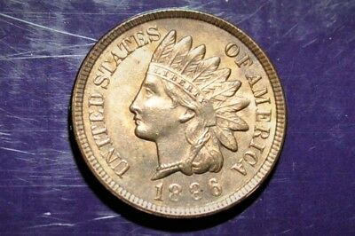 1896 Indian Head Stunning BU Blaze Orange