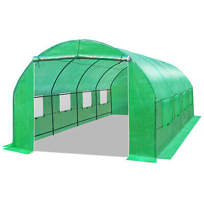 Heavy Duty 20'L Large Walk-In Greenhouse Outdoor Steel Frame Hot Green House