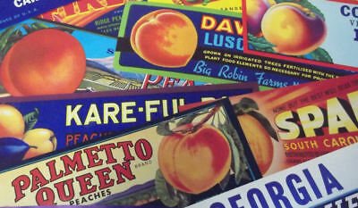 14 Different Vintage Peach Crate Labels