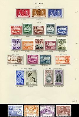 Collection of Antigua KGVI on leaves cat 155.35 pounds