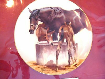 The Water Trough  Horse Plate By Fred Stone With Coa