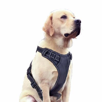Pet Control Harness No Pull for Dog & Cat Walk Collar Easy Control 3M Reflective