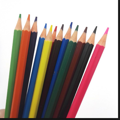 Artist's Colouring Pencils Set For Sketching Assorted Colours Pack Of 12