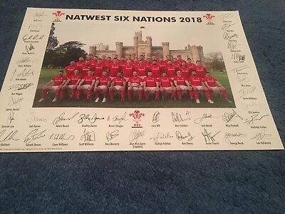 Wales Rugby Team Poster