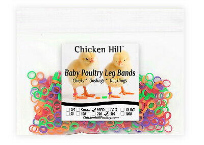 "500 Chick Leg Bands ~ 1/4"" Medium Size 4 Baby Poultry Mix of 5 colors"