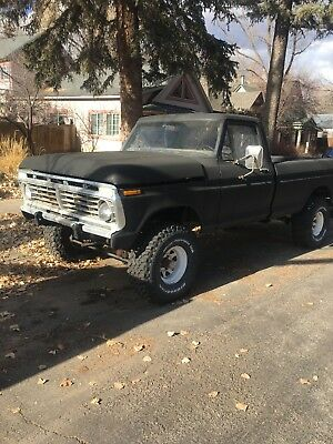 1975 Ford F-100  1975 Ford F100 V8 4speed 4WD