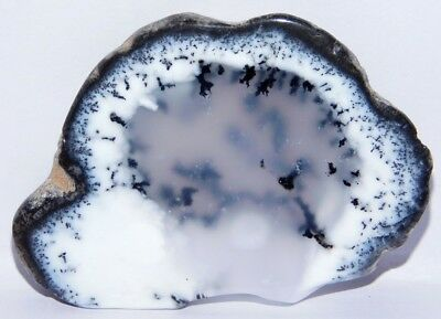 87Cts. Natural Museum Size Dendrite Agate Opal Rough Gemstone Cab 4193