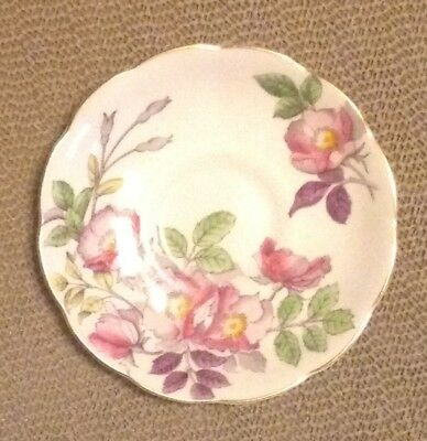 Royal Albert Flower of the Month Series Replacement Saucer: Dog Rose