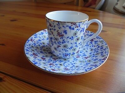 A bone china  Cup and Saucer made by EJD BODLEY   C 1880