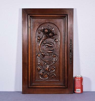 French Antique Deeply Carved Panel Solid Walnut Wood with Cornucopia