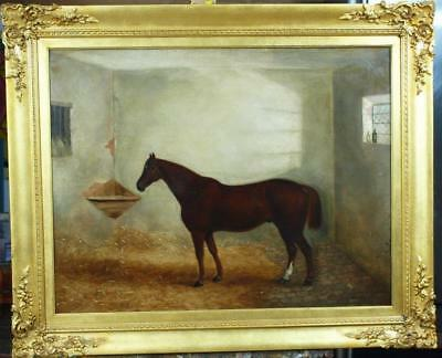 LARGE Fine 19th Century Equestrian PORTRAIT BAY HORSE  Antique Oil Painting
