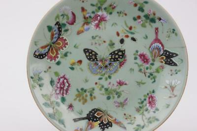 Chinese Celadon Plate Famille Rose, Butterflies, Flowers & Insects Mark On Base