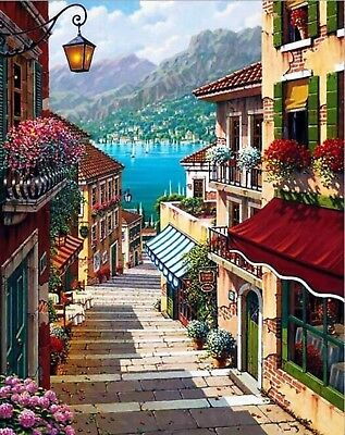LAKESIDE VILLAGE VIEW PAINT BY NUMBERS CANVAS PAINTING KIT 20 x 16 FRAMELESS