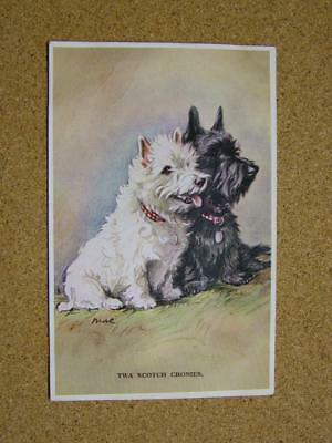 "1900s Valentines Tailwagger Series Postcard ""Twa Scottish Cronies"" No2749 by Mac"