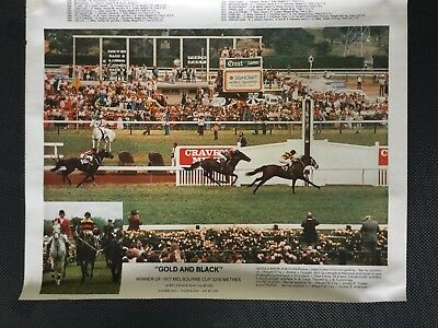 Melbourne cup race winning photos