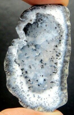 46Cts. Natural Royal Dendrite Opal Agate Plate Rough Loose Gemstone 2239