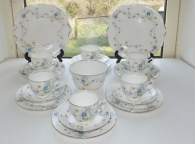 Salisbury Fine China Rosarie Pattern Hand Painted 21 PC Cups Saucers Plates Bowl