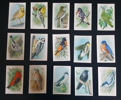 Useful Birds of America series  Nine Trade cards  ARM and HAMMER 1 through 15