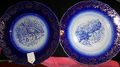 Blue and Gold Turkey Plates