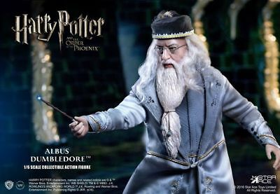 Harry Potter : Dumbledore 1:6 Scale Action Figure from Star Ace Toys